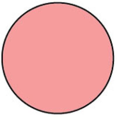 1413PI - Circle Pink Shipping Label